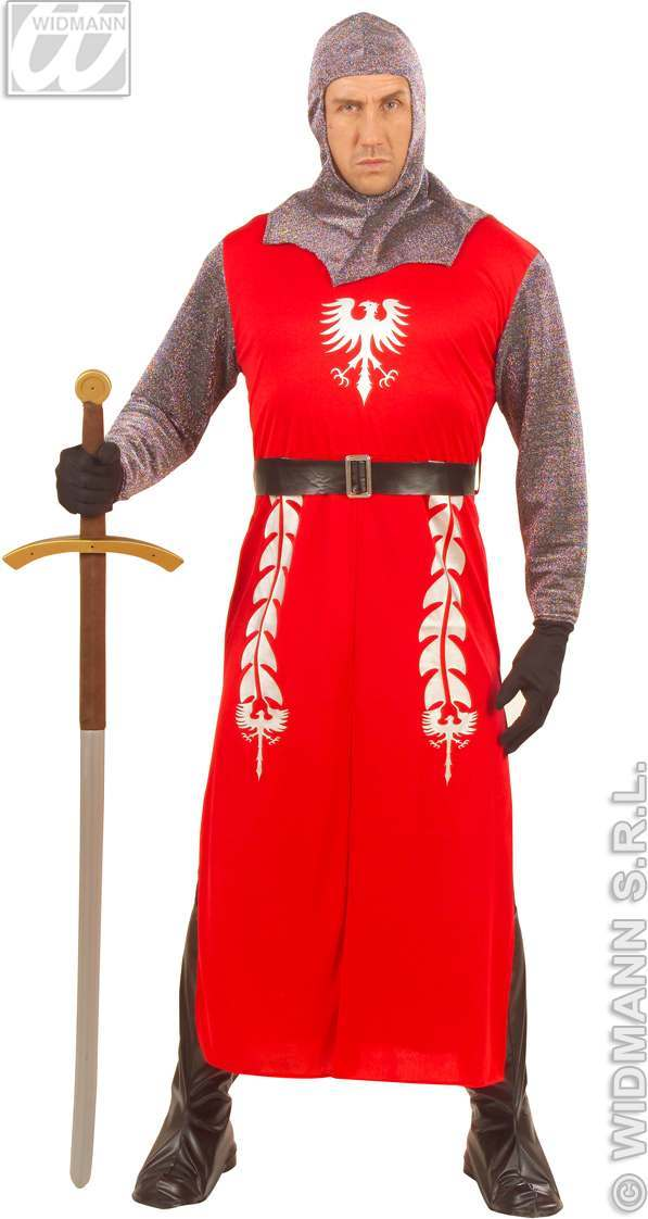 King Arthur Adult Fancy Dress Costume Mens Royalty