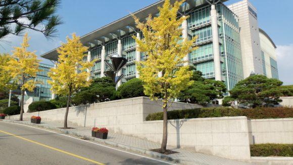 韓国おすすめ大学調査!費用など留学前に知るべき事!