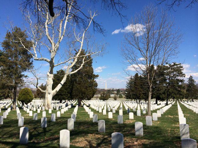 Arlington NC Washington Monument