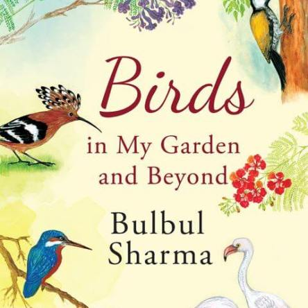 BIRDS IN MY GARDEN AND BEYOND