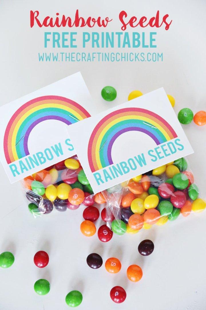 Rainbow Party Ideas: DIY rainbow party favor rainbow seeds with Skittles