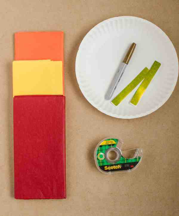 supplies for Olympic torch craft