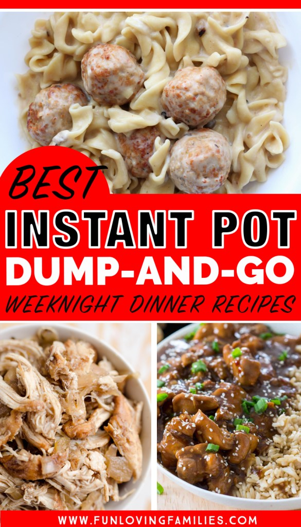 best instant pot dump and go dinner recipes