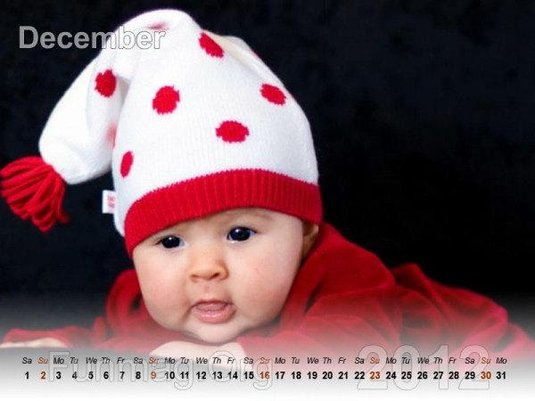 babies-calendar-12