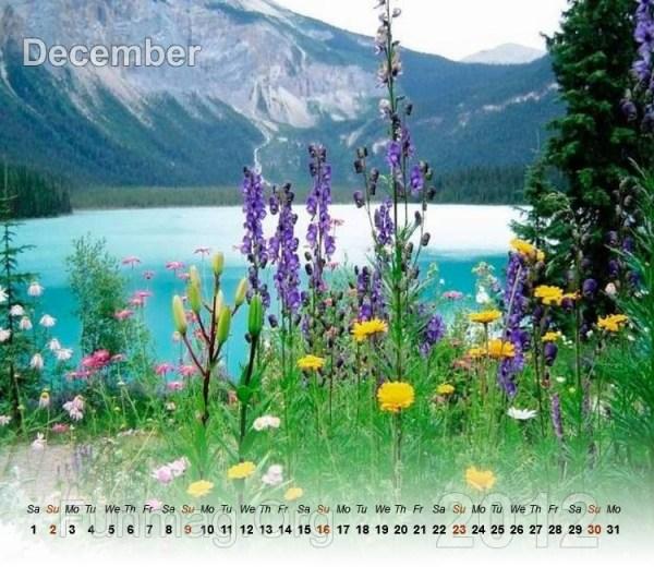 nature-calendar-12