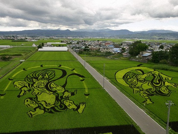 rice paddy art (15)