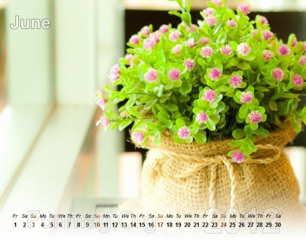 flower-calendar-06