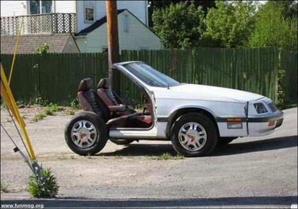 funny-car-photos- (7)