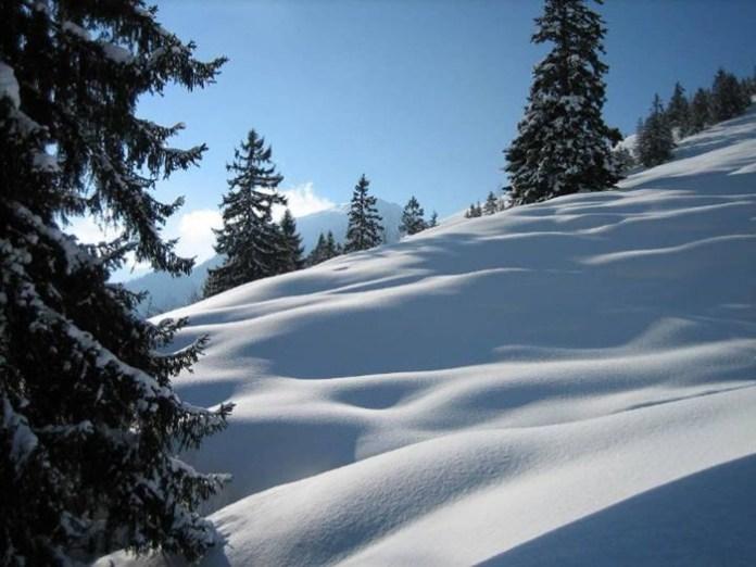 white-scenery-01