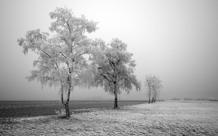 white-scenery-02