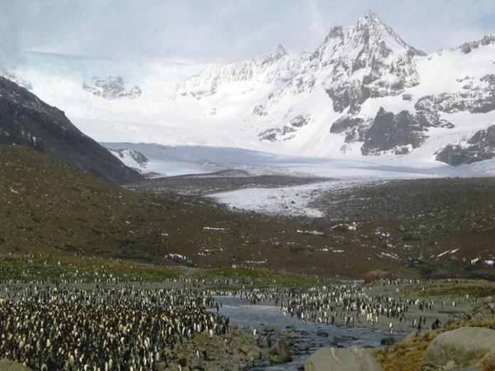breathtaking-photos-of-antarctica- (20)