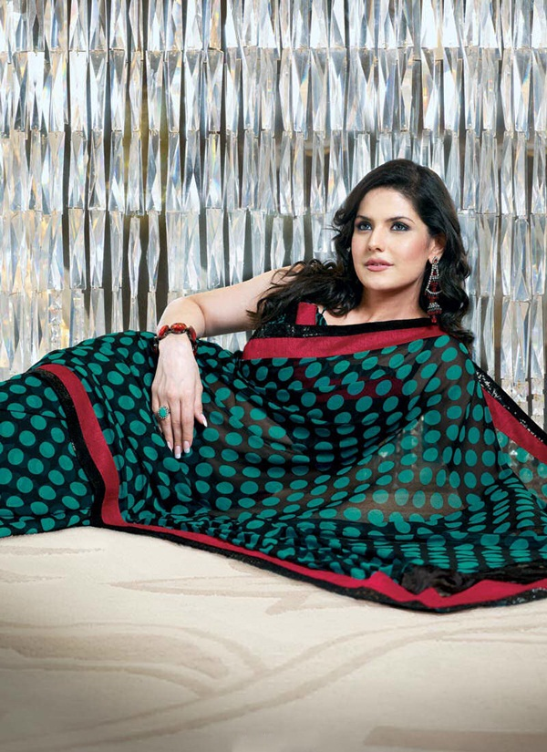zarine-khan-glorious-saree-collection- (9)