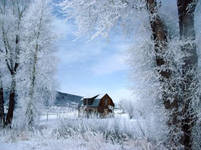 beautiful-winter-scenery- (4)