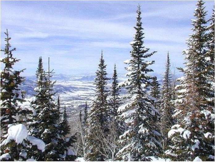 beautiful-winter-scenery- (10)