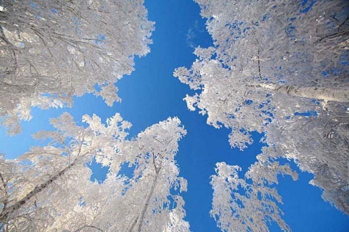 beautiful-winter-scenery- (31)