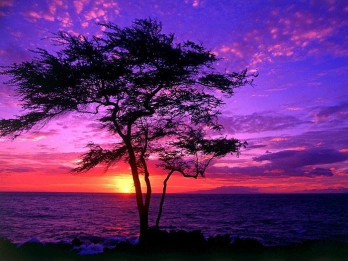 colorful-sky-17-photos- (6)