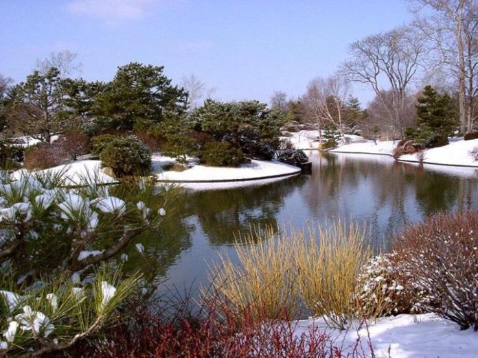 snow-in-autumn- (1)