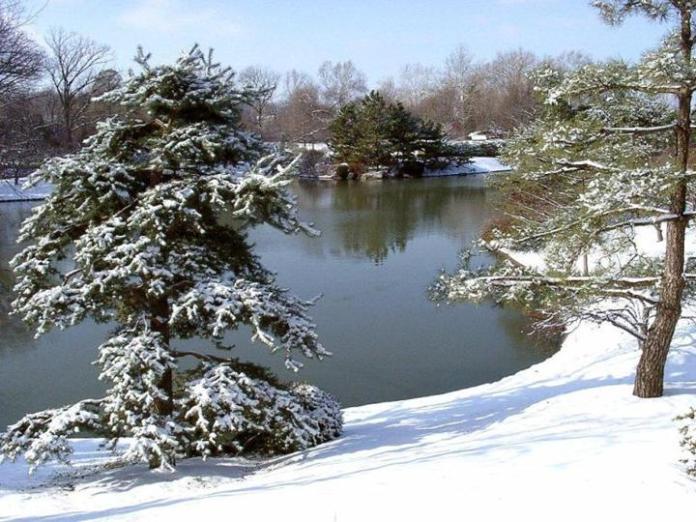 snow-in-autumn- (4)