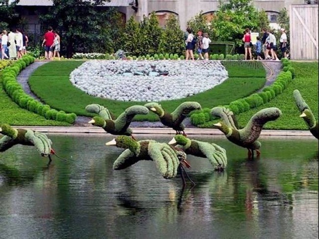 topiary-animals- (3)