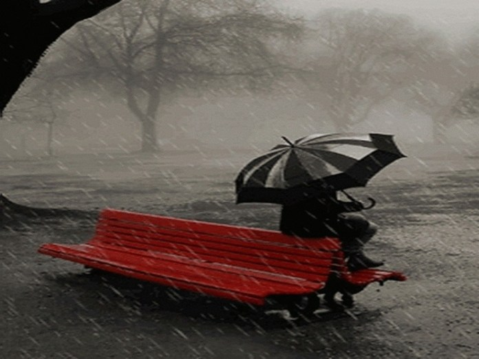 beautiful-rain-pictures-45-photos- (42)