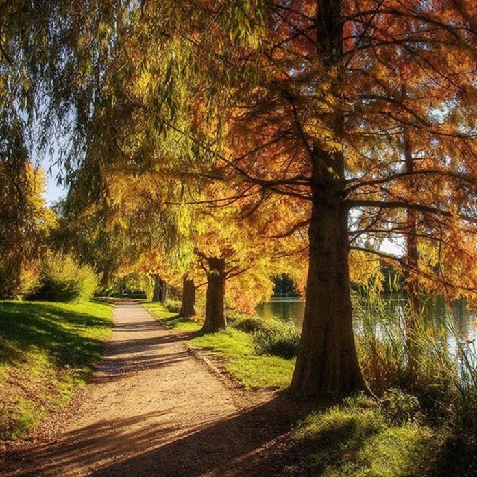 fabulous-nature-scenery-25-photos- (3)