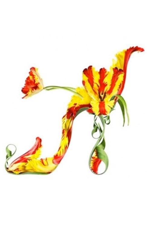 flower-shoe- (11)
