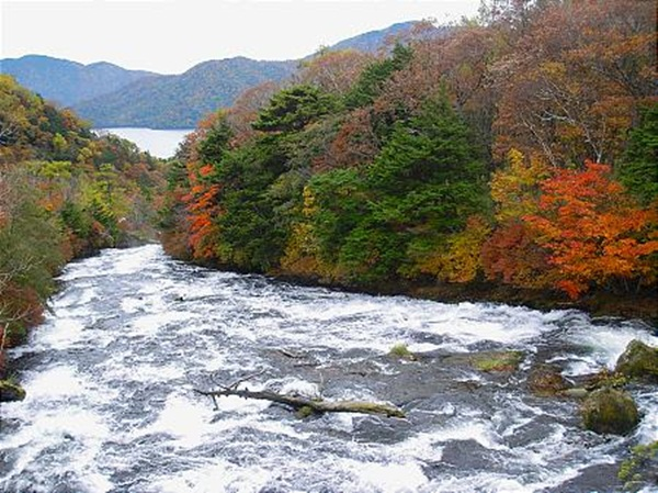 autumn-in-japan- (3)
