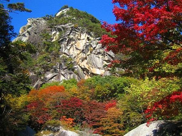 autumn-in-japan- (8)