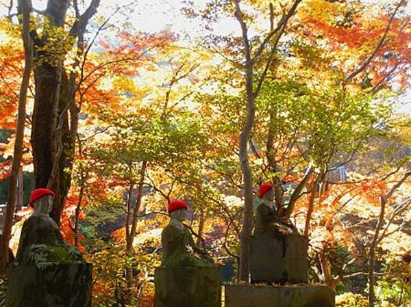 autumn-in-japan- (9)