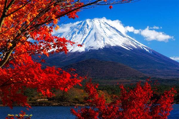 autumn-in-japan- (14)