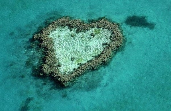 hearts-in-nature- (33)
