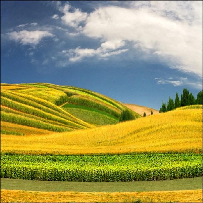 beautiful-landscape-photos- (1)
