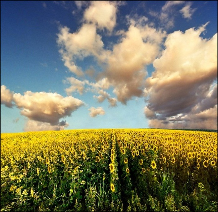 beautiful-landscape-photos-20