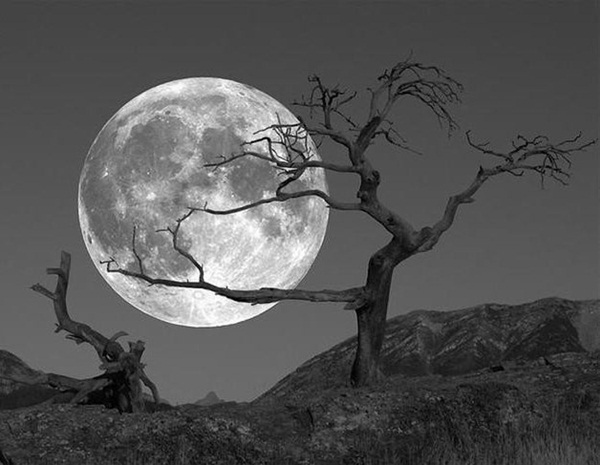 beautiful-moon-pictures- (25)
