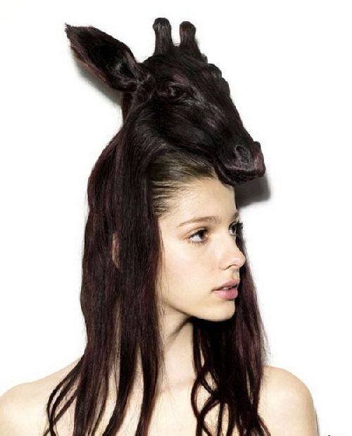 crazy-animal-hairstyle- (1)