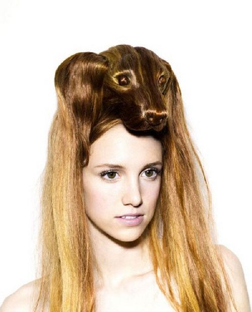 crazy-animal-hairstyle- (5)