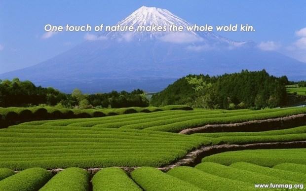 best-nature-quotes- (6)