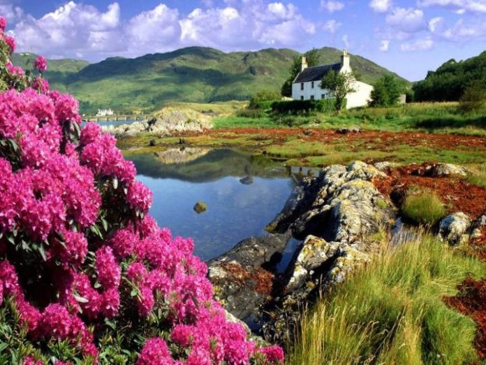 beautiful-nature-scenery-06