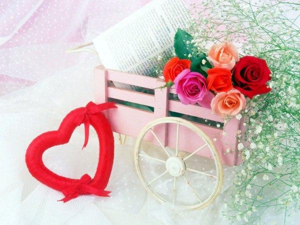 beautiful-roses-wallpapers-20-photos- (15)