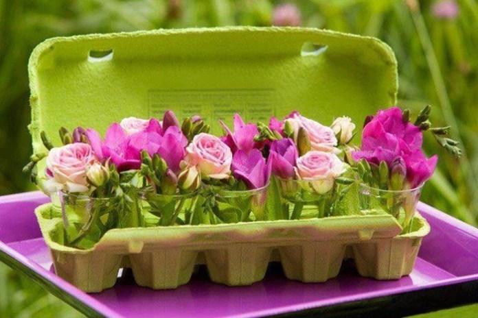 bloom-fresh-flowers- (5)