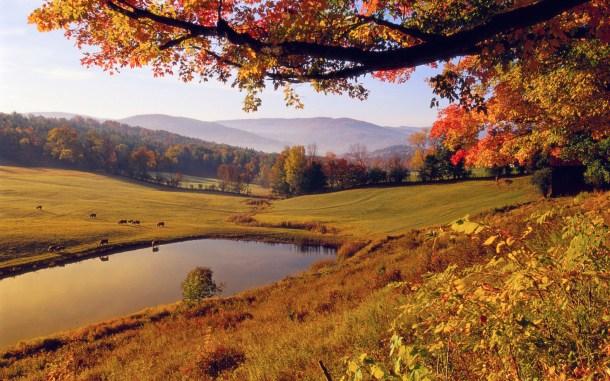 beautiful-autumn-wallpapers- (10)