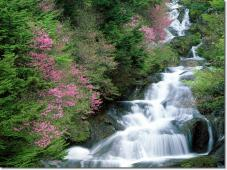 picture-of-waterfalls- (19)