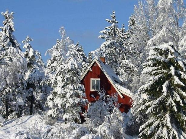 25-winter-photos- (18)
