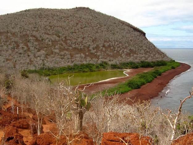 galapagos-island-45-photos- (34)