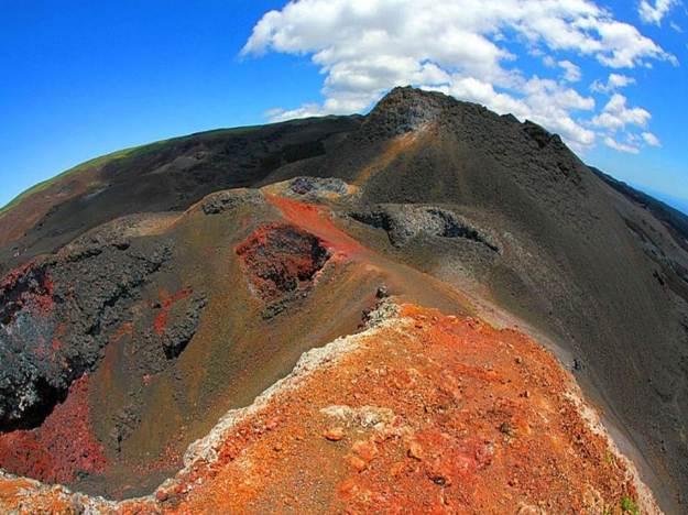 galapagos-island-45-photos- (35)