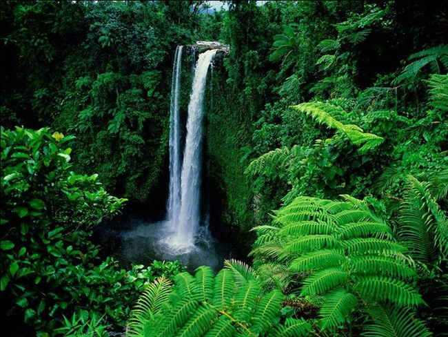 natural-waterfalls-18-photos- (8)