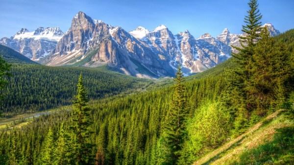 beautiful-nature-wallpapers-15-photos- (7)