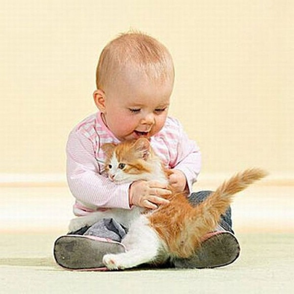 babies-and-cats- (12)
