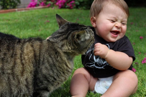 babies-and-cats- (2)