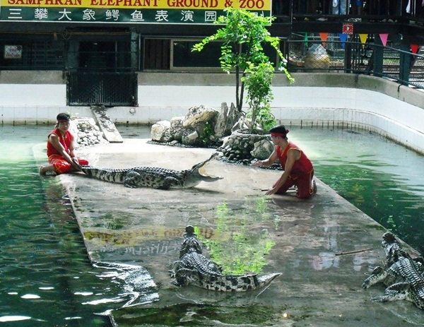 tour-of-thailand-41-pictures- (37)